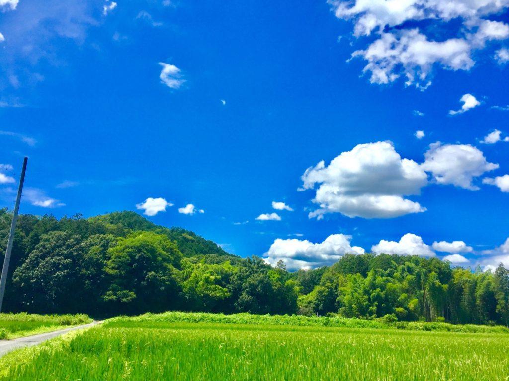 【田舎暮しは甘くない】憧れの地方移住を実現するまでのプロセス