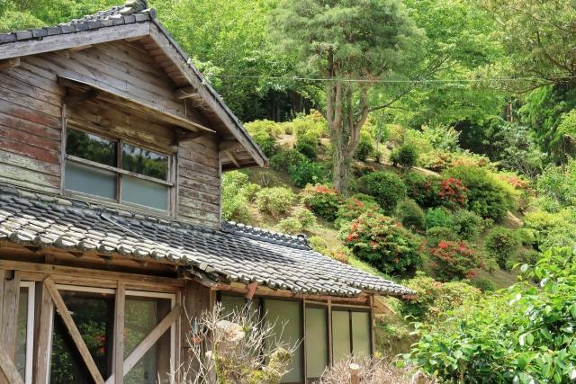 庭付き一戸建ての空き家物件を購入する際のチェックポイント